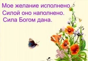 74560754_33494108_normal_flowers75