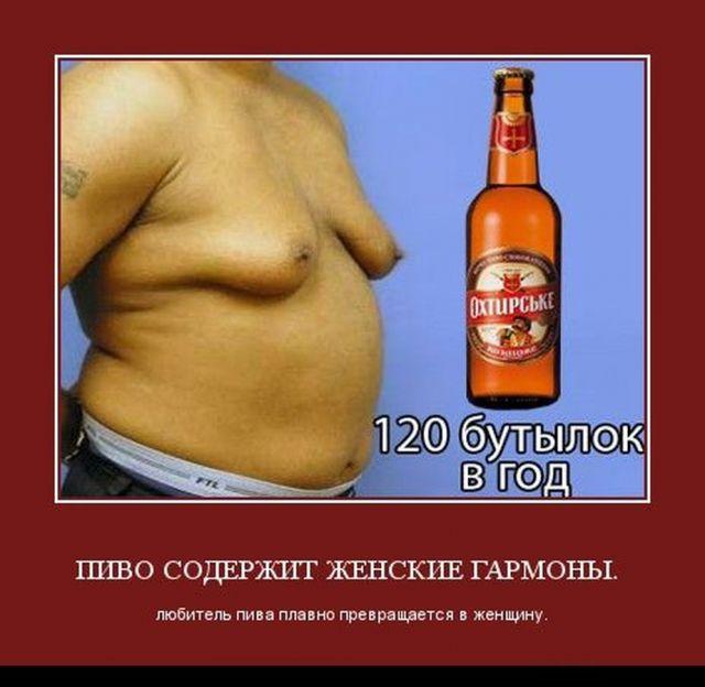 Как пиво влияет на потенцию мужчин