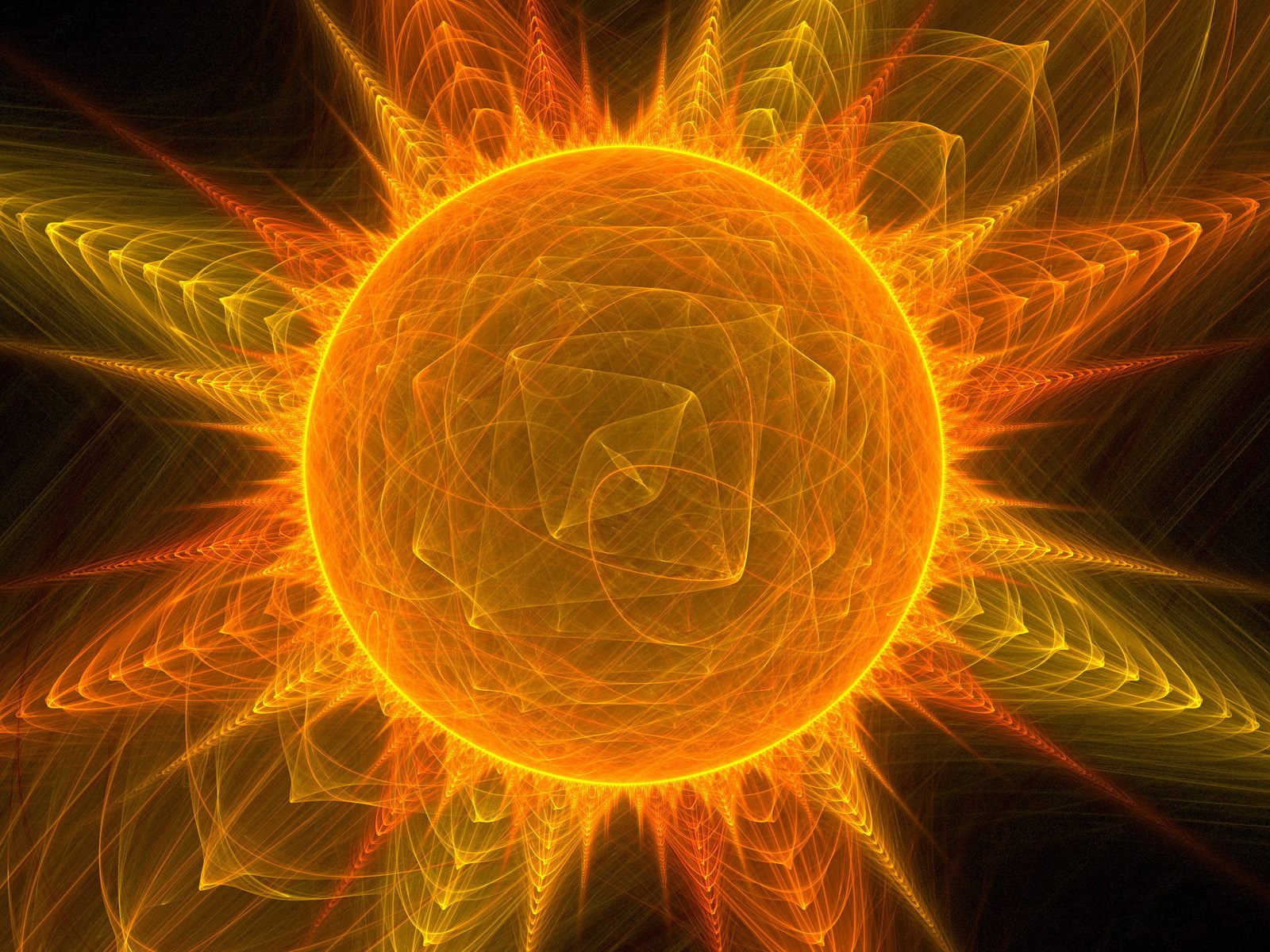 ecology soes the anle of sun
